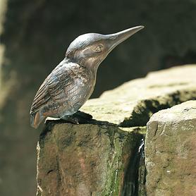 eisvogel-flugel-zu-13-5-cm