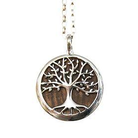 Colliers Lieblingsbaum Walnuss