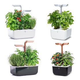 Smarter Kräutergärten