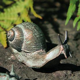 skulptur-schnecke-emil-h-4-x-b-8-x-t-3-cm