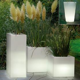 Beleuchtete Pflanzgefäße