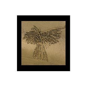 Bild Sandspirale Vogel 2