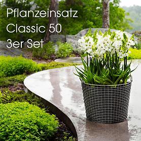 pflanzeinsatz-3er-set-gro-classic50