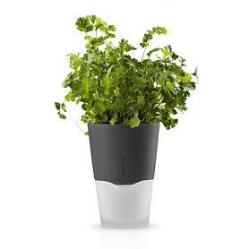 krautertopf-plant-h-18-cm