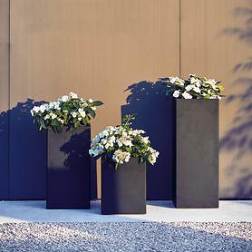 Design-Pflanzgefäß Planter