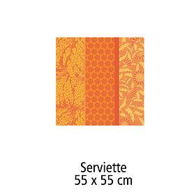 Serviette 55 x 55 cm Tischgarnitur Graminée
