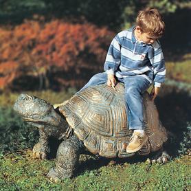 Skulptur Schildkröte