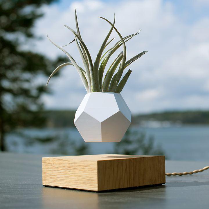 Vase schwebend Flyte Lyfe