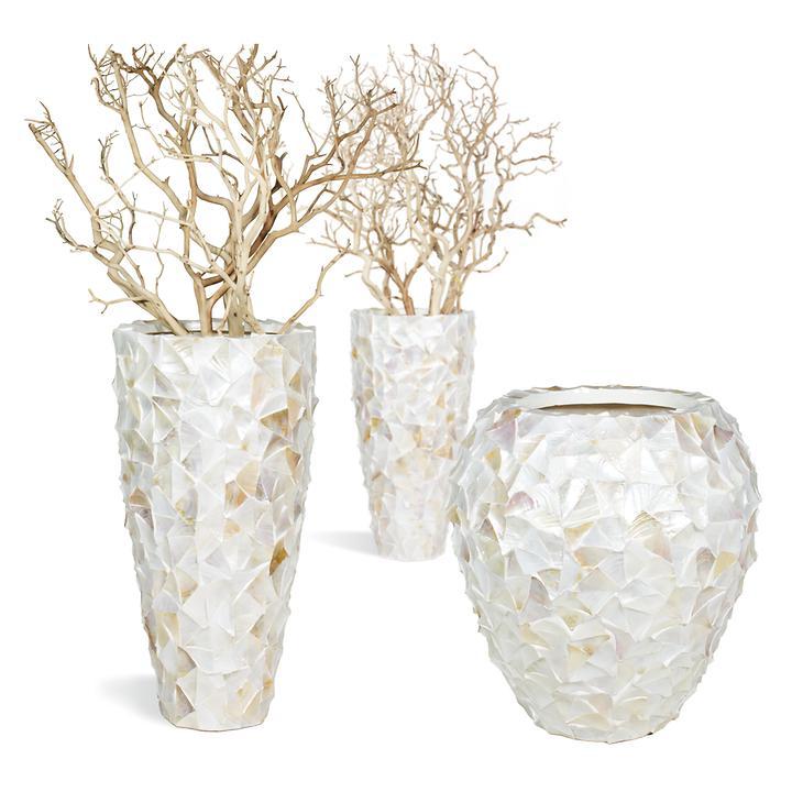 Vasen Shell