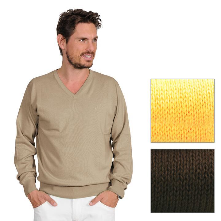 V-Ausschnitt-Pullover Daniel Hechter