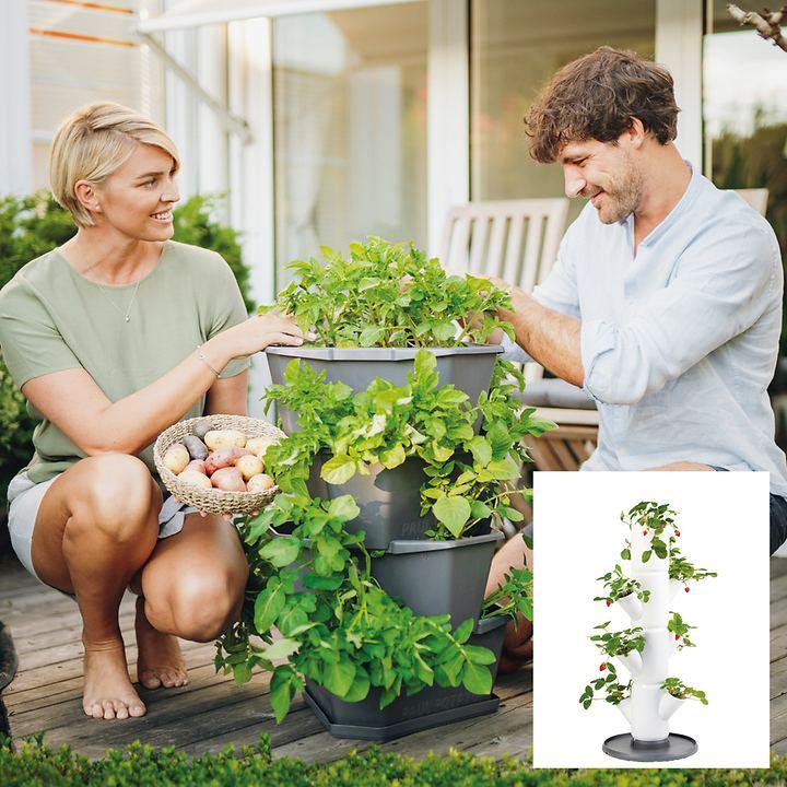 Pflanzgefäße für Erbeeren und Kartoffeln